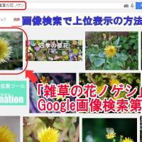 画像検索上位に表示方法