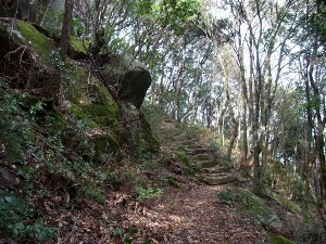 山歩き「浮嶽」