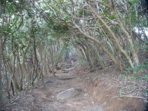 芥屋の大門 散策