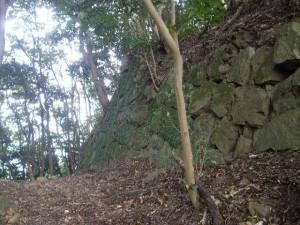 気ままに城跡めぐり「岸岳城」