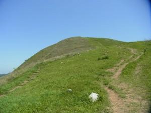 気ままに山歩き 平尾台